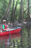 Canoeing at Congaree National Park