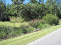 Bioswale at The Cove, Sumter, SC