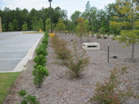 Bioretention at Killian Marketplace, Columbia, SC