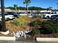 Bioretention at Whole Foods, Columbia, SC